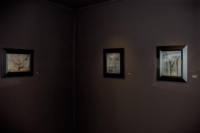 © Foto: Mark Kessel, Daguerreotypien in einem speziell abgedunkelten Raum